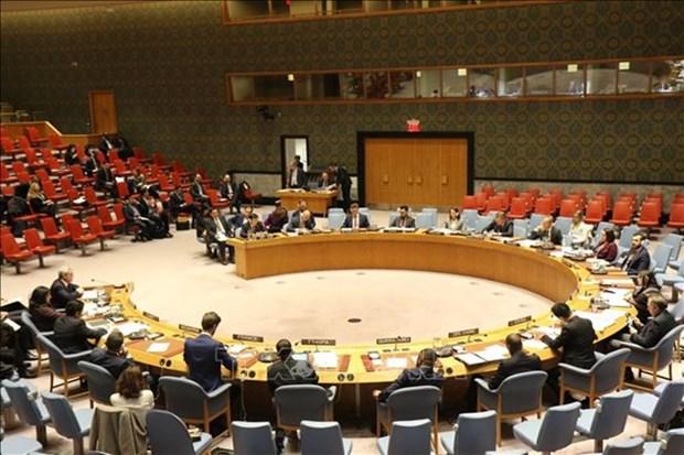 Vietnam llama a continua reforma de ONU basada en prioridades de los paises hinh anh 1