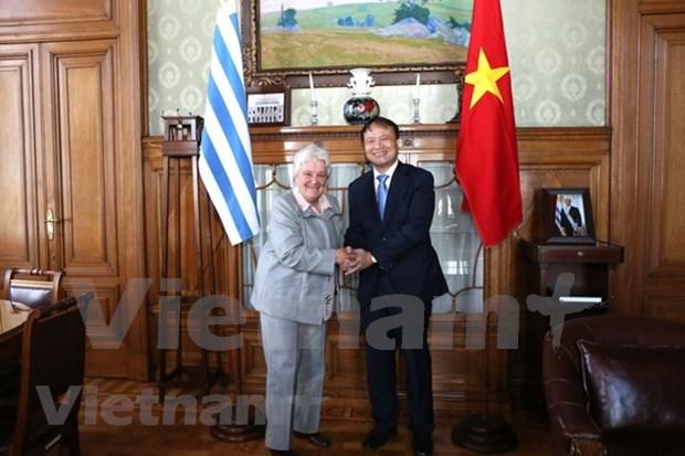 Vicepresidenta de Uruguay aboga por estrechar vinculos con Vietnam hinh anh 1