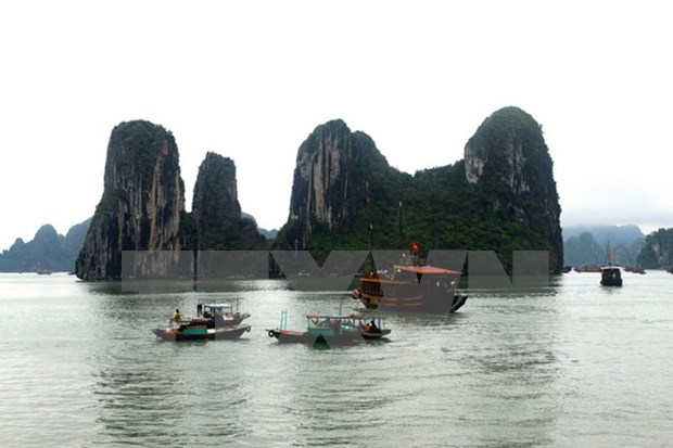 Exposicion destaca a Vietnam a traves de fotos artisticas hinh anh 1