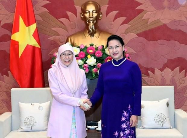 Vietnam y Malasia acuerdan intensificar cooperacion en la proteccion de derechos de mujeres hinh anh 1