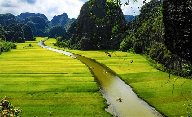 Turoperadores promueven desarrollo del turismo de provincia norvietnamita de Ninh Binh hinh anh 1