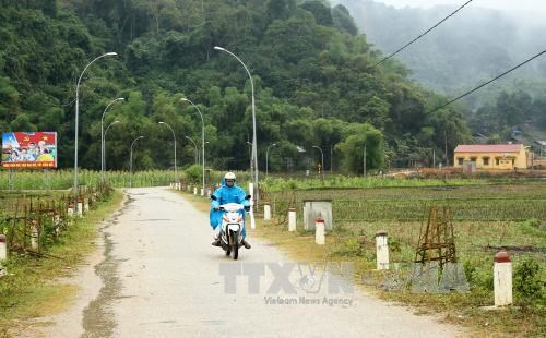Mas de tres mil 500 comunas vietnamitas cumplen estandares de zonas rurales de nuevo estilo hinh anh 1