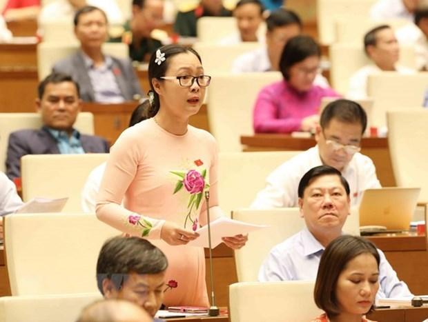 Asamblea Nacional de Vietnam revisa plan del desarrollo socioeconomico hinh anh 1