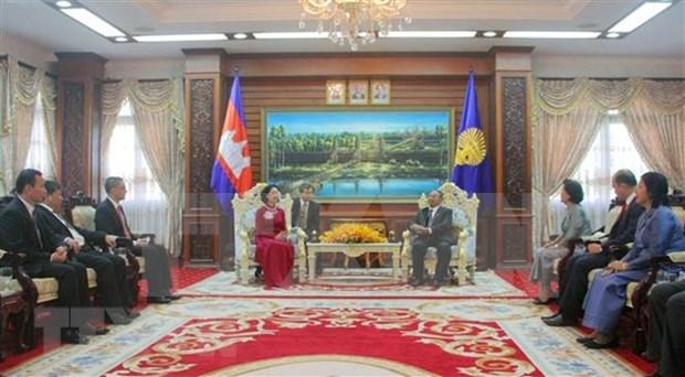 Vietnam y Camboya se proponen agilizar lazos politicos hinh anh 1