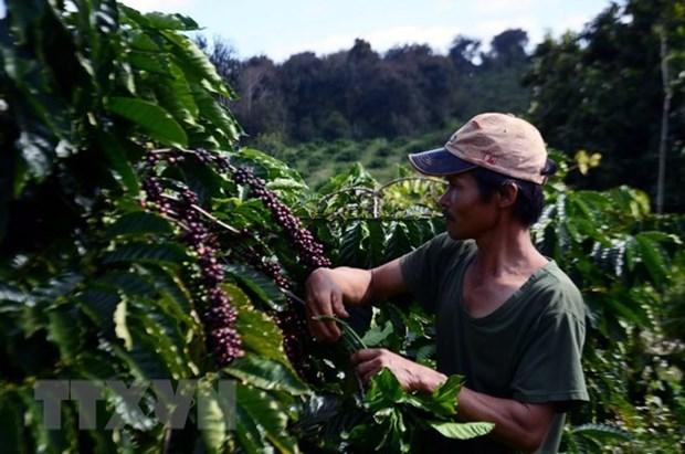 Premier de Vietnam aprueba proyecto a favor de la reduccion sostenible de la pobreza hinh anh 1