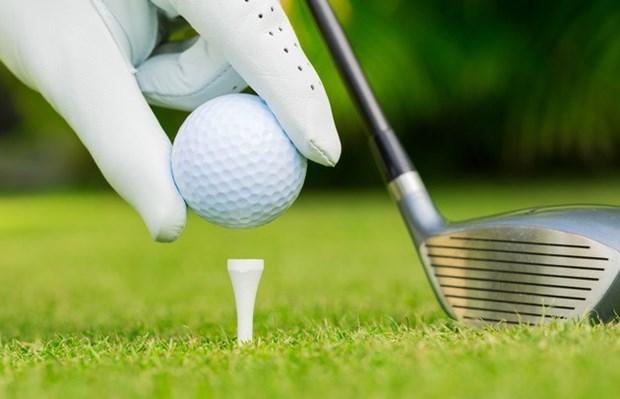 Celebran torneo amistoso de golf de comunidad vietnamita en Alemania hinh anh 1
