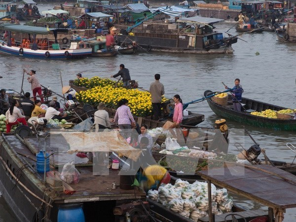Ciudad survietnamita de Can Tho aspira a convertir turismo en sector clave hinh anh 1