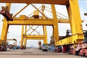 Ciudad Ho Chi Minh se empena en elevar calidad de servicios logisticos en puertos maritimos hinh anh 1