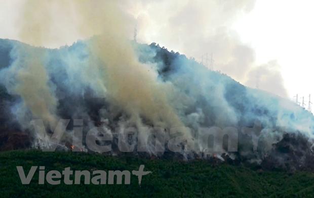 Alemania asiste a Vietnam en respuesta al cambio climatico hinh anh 1