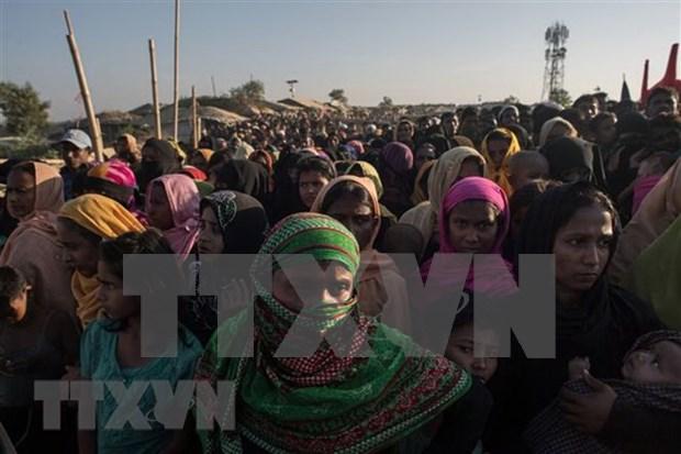 Myanmar y Bangladesh comenzaran repatriacion de rohingyas en noviembre hinh anh 1