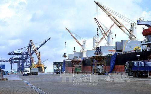 Puertos maritimos de Vietnam atienden 431 millones de toneladas de bienes en lo que va de ano hinh anh 1