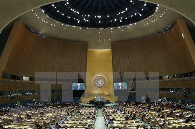 Vietnam defiende el respeto y garantia de los derechos humanos hinh anh 1
