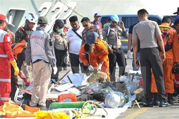 Impulsan actividades de identificacion de victimas de siniestro aereo en Indonesia hinh anh 1