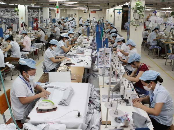 Industria textil de Vietnam por reducir dependencia de materias primas importadas hinh anh 1