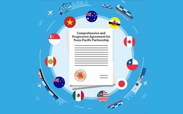 CPTPP impulsara nexos comerciales entre Vietnam y paises de America Latina hinh anh 1