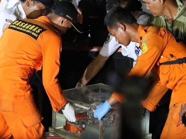 Detectan falla de anemometro de avion siniestrado en Indonesia hinh anh 1