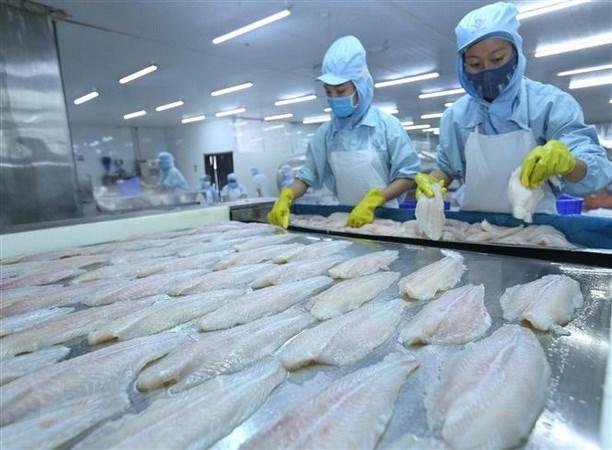 Exportaciones de productos acuicolas de Vietnam crecen 6,2 por ciento hinh anh 1