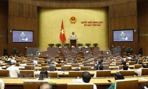 Parlamento de Vietnam estudiara proyectos de Leyes de Amnistia y Ganaderia hinh anh 1