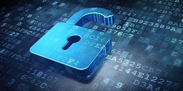 Unos 4,7 millones de direcciones de IP en Vietnam pertenecen a redes afectadas por codigos maliciosos hinh anh 1
