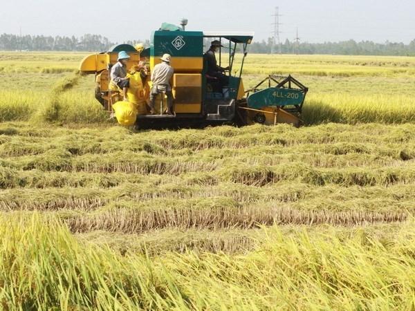 Respaldan a delta del rio Mekong mejorar capacidad de respuesta al cambio climatico hinh anh 1