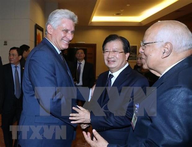 Inversores vietnamitas poseen especial posicion en Cuba, afirma presidente Diaz-Canel hinh anh 1