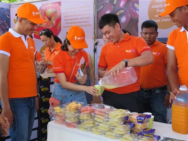 Inauguran Festival de cultura holandesa en ciudad vietnamita de Can Tho hinh anh 1