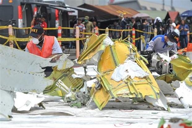 Indonesia concluye busqueda de pasajeros del avion accidentado de Lion Air hinh anh 1
