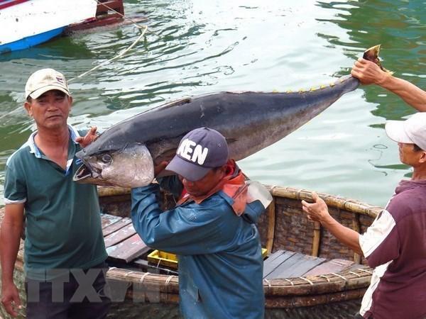 Funcionarios vietnamitas reciben entrenamiento para combatir pesca ilegal hinh anh 1