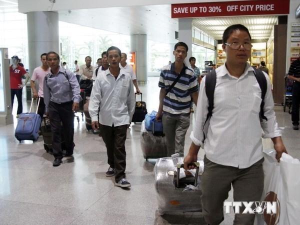 Aumenta cifra de trabajadores vietnamitas en el exterior este ano hinh anh 1