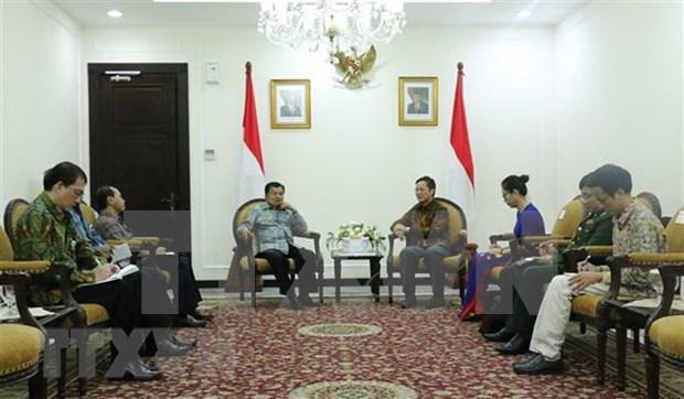 Vietnam e Indonesia desarrollan relaciones de cooperacion hinh anh 1