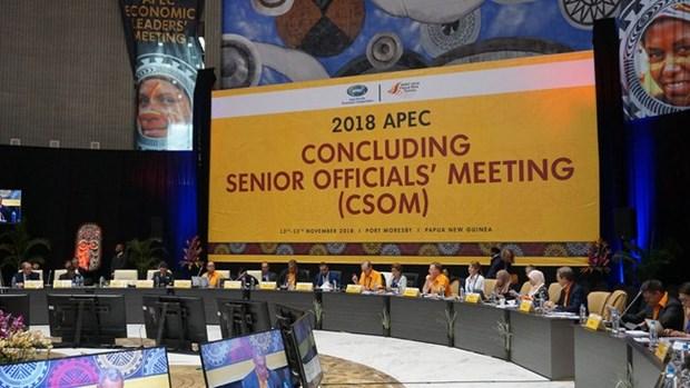 Vietnam participa en reunion de altos funcionarios de APEC en Papua Nueva Guinea hinh anh 1