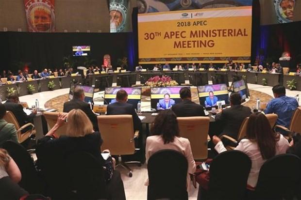Premier de Vietnam participara en la Cumbre de APEC en Papua Nueva Guinea hinh anh 1