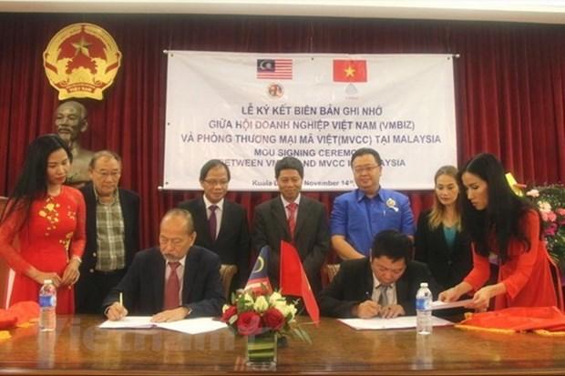 Fomentan la cooperacion empresarial entre Vietnam y Malasia hinh anh 1