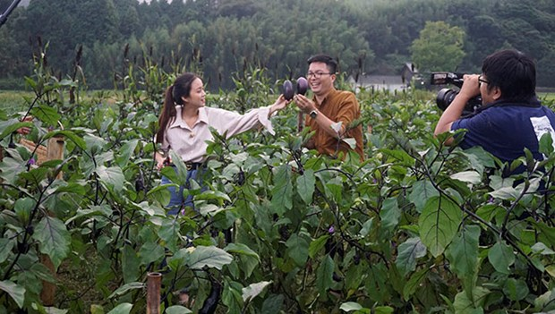 Audiencia vietnamita aprendera turismo verde en Japon mediante programa televisivo hinh anh 1