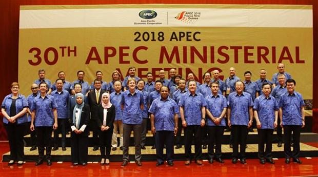 Canciller de Vietnam insta a economias de APEC a promover crecimiento sostenible hinh anh 1