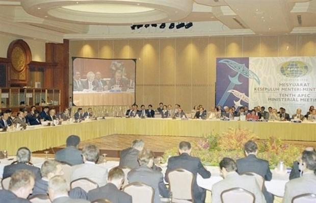 Incorporacion a APEC: Vision estrategica de Vietnam sobre integracion economica hinh anh 1