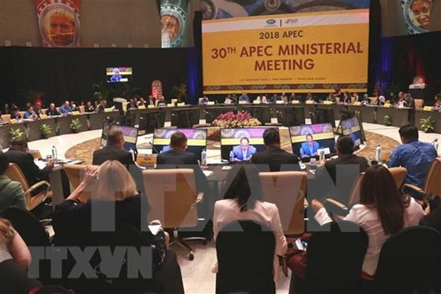 Viceprimer de Vietnam conversa con ministros de Japon, Australia y Nueva Zelanda hinh anh 1