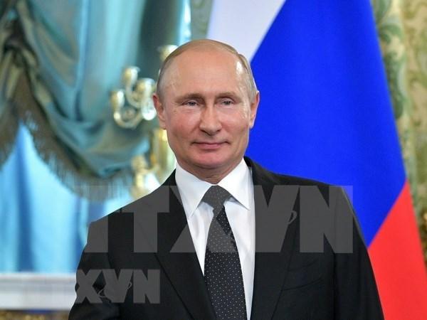 Indonesia y Rusia buscan ampliar cooperacion economica hinh anh 1