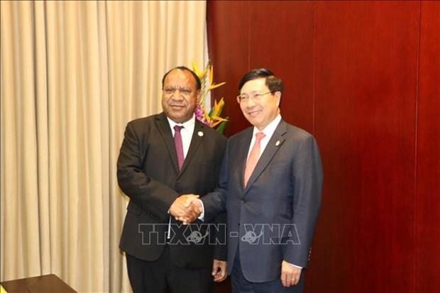 Cancilleres de Vietnam y Papua Nueva Guinea se entrevistan al margen del APEC hinh anh 1