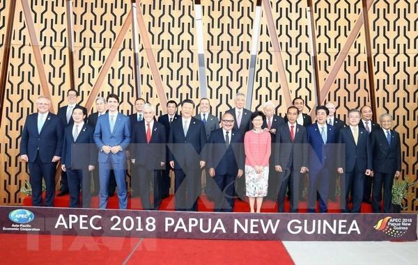 APEC no logra consenso por primera vez en la historia hinh anh 1
