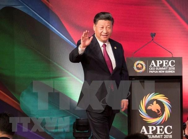 China llama a economias miembros del APEC a trabajar por prosperidad de Asia-Pacifico hinh anh 1