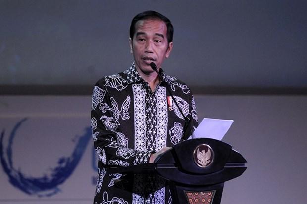 Presidente indonesio destaca papel de pequenas y medianas empresas hinh anh 1