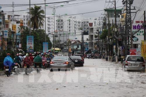 Al menos 12 muertos por lluvias torrenciales en provincia centrovietnamita de Khanh Hoa hinh anh 1