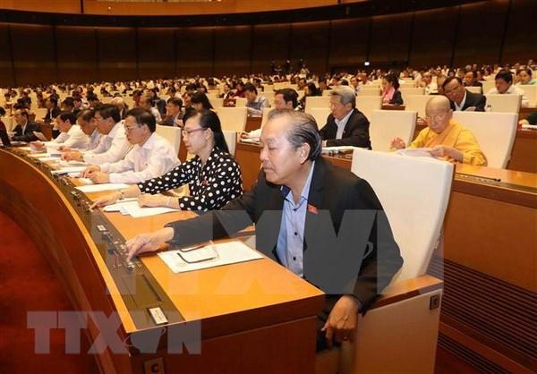 Parlamento de Vietnam aprueba Ley de Amnistia (modificada) hinh anh 1