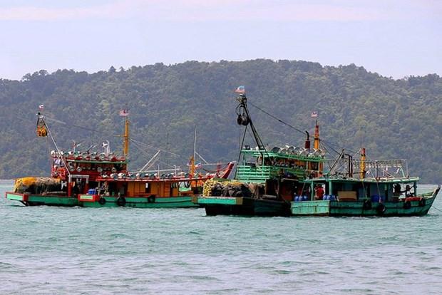 Exhortan pescadores indonesios a la pronta demarcacion fronteriza con Malasia hinh anh 1