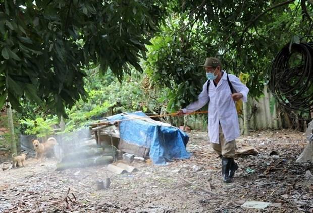 Provincia vietnamita de Phu Yen libre de la gripe aviar tipo H5N6 hinh anh 1