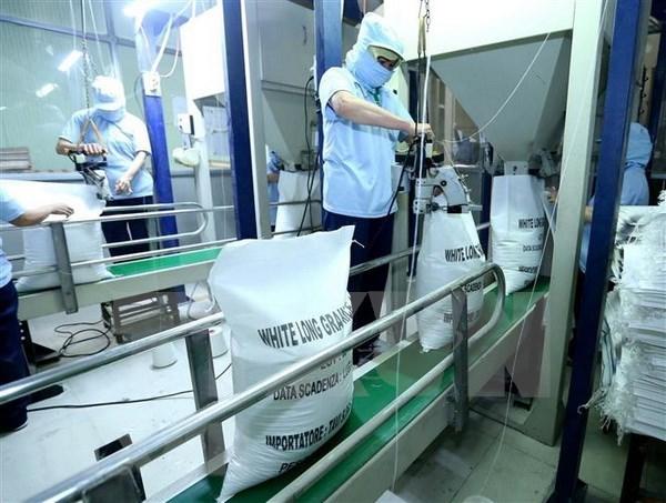 Paises Bajos impulsa intercambio de experiencias con Vietnam sobre higiene alimentaria hinh anh 1