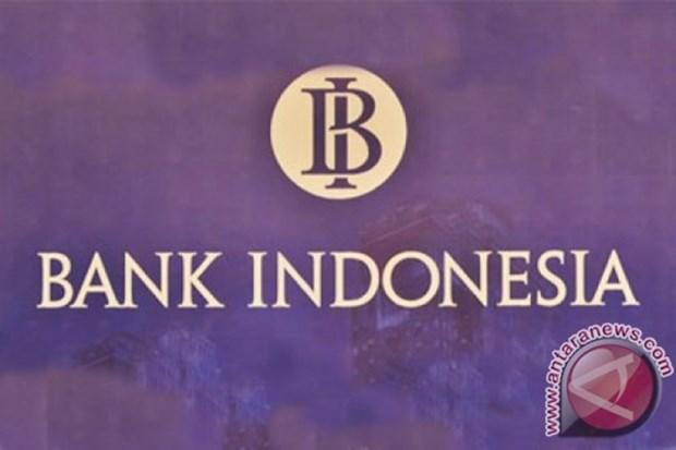Indonesia pronostica un crecimiento economico de 5,1 por ciento en 2019 hinh anh 1