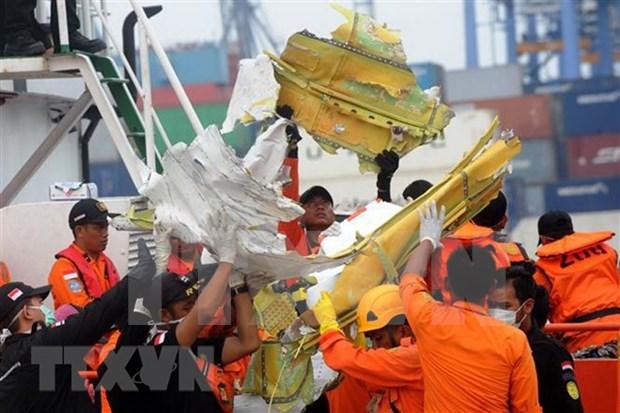 Concluye la identificacion de las victimas del desastre aereo en Indonesia hinh anh 1
