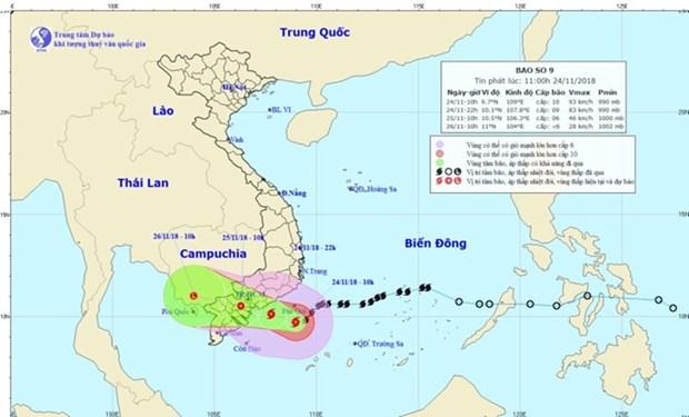 Vietnam acelerara preparativos ante llegada de tifon Usagi hinh anh 1